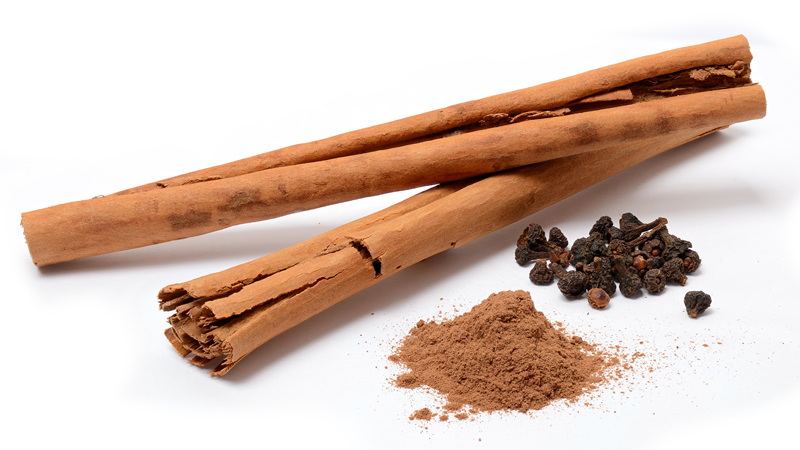 Essential oil of the month - Cinnamon