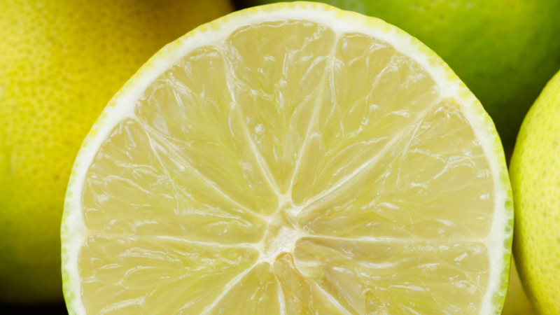 Essential oil of the month - Bergamot