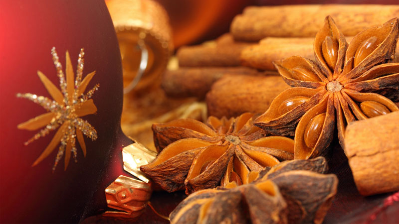 Essential oil of the month - Star Anise