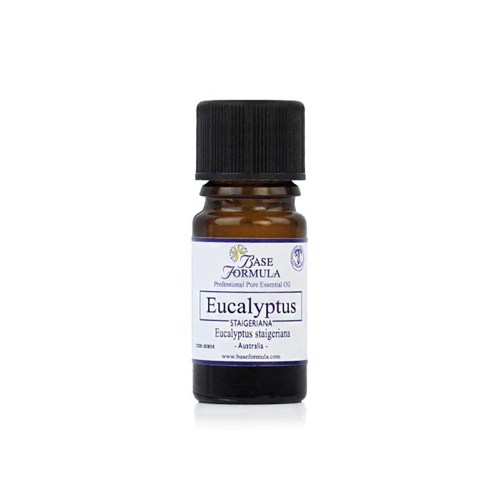 Eucalyptus (Staigeriana) Essential Oil
